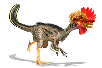chickenosaur-dreamstimecomp_22240810